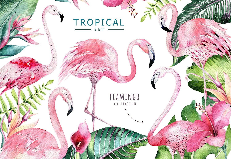 Рюкзаки с Фламинго 11 моделей в наличии