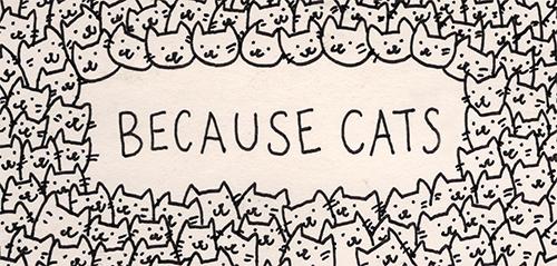 Няшные рюкзаки с котиками